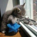Snipercat88
