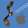 BootCamp Windows 10 OEM - last post by Eagle4