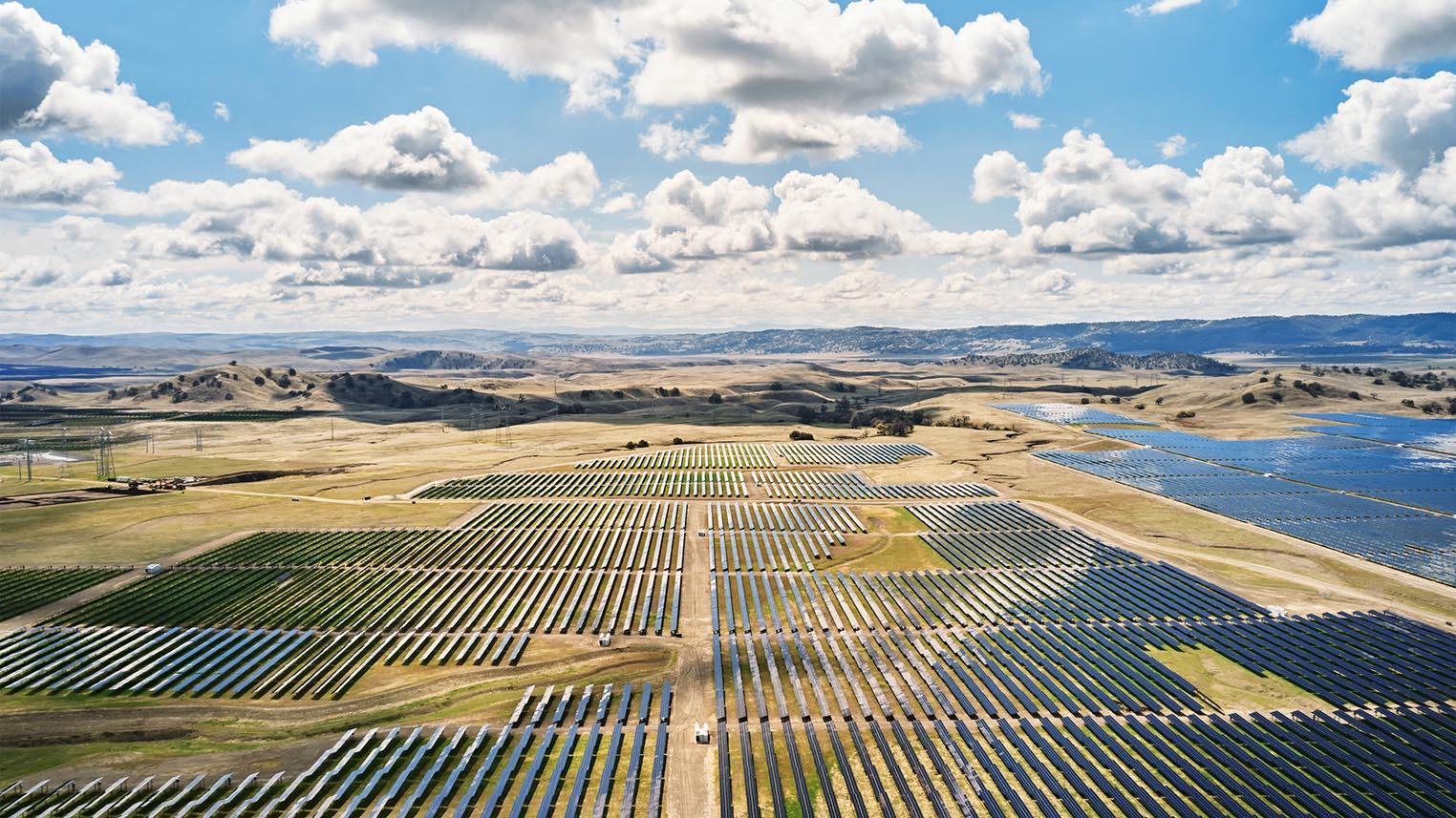 Apple California Flats