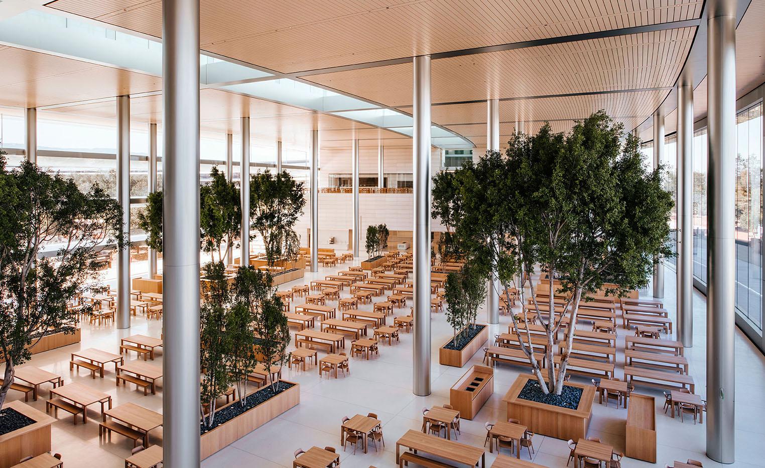 Apple Park cafeteria