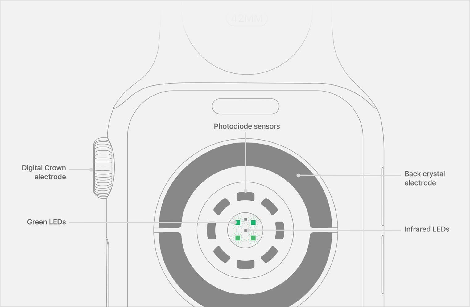 Apple Watch 4 capteurs