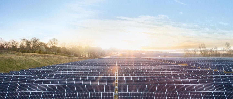Champs panneaux solaires Apple