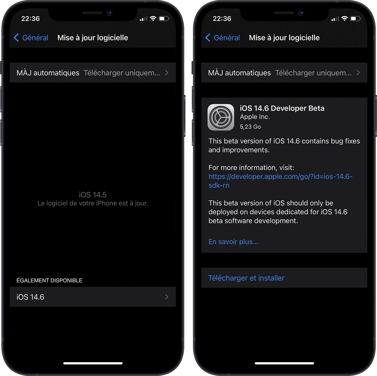 iOS 14.6 Bêta 1