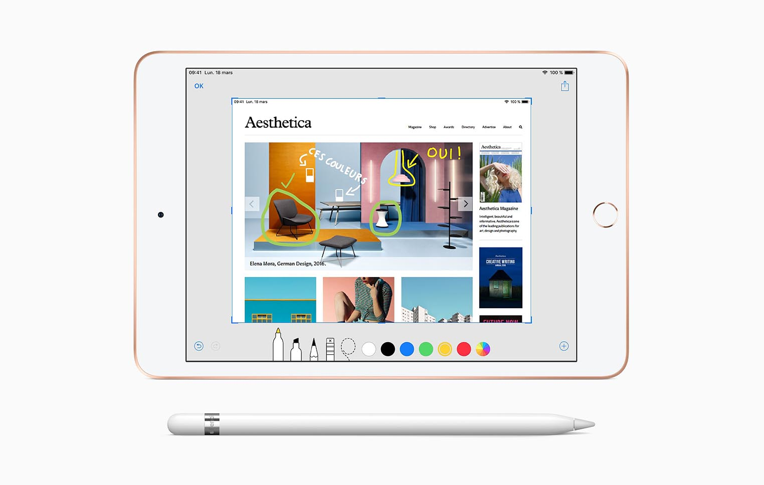 iPad mini Apple Pencil