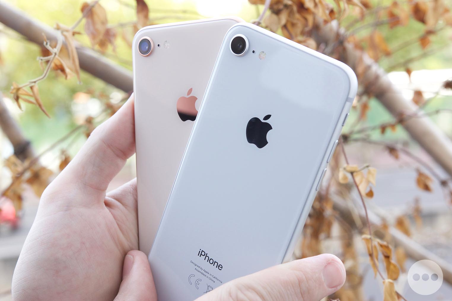 iPhone 8 dos verre