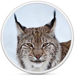 OS X Lynx