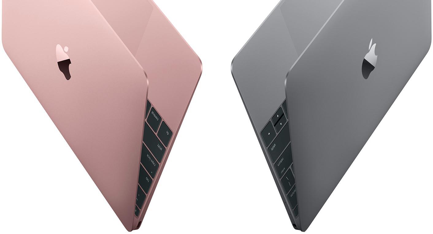 MacBook or rose