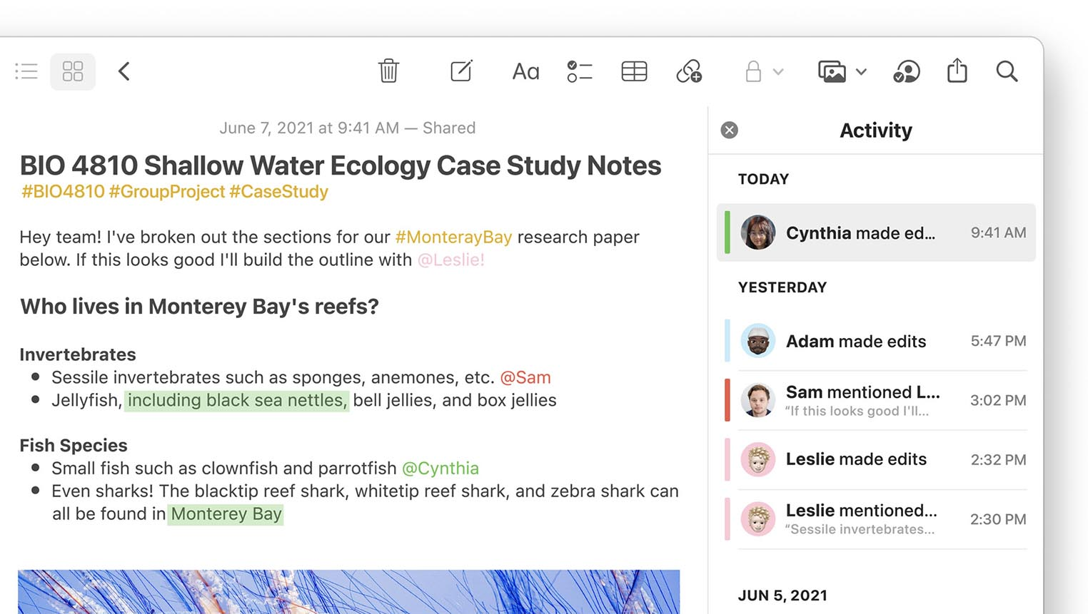 macOS Monterey Notes
