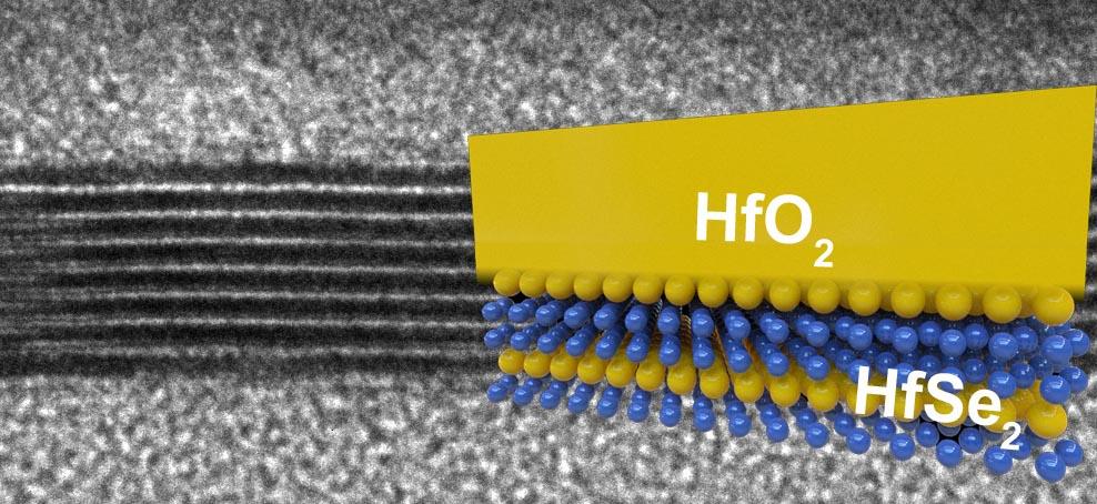 Processeurs diselenide de hafnium
