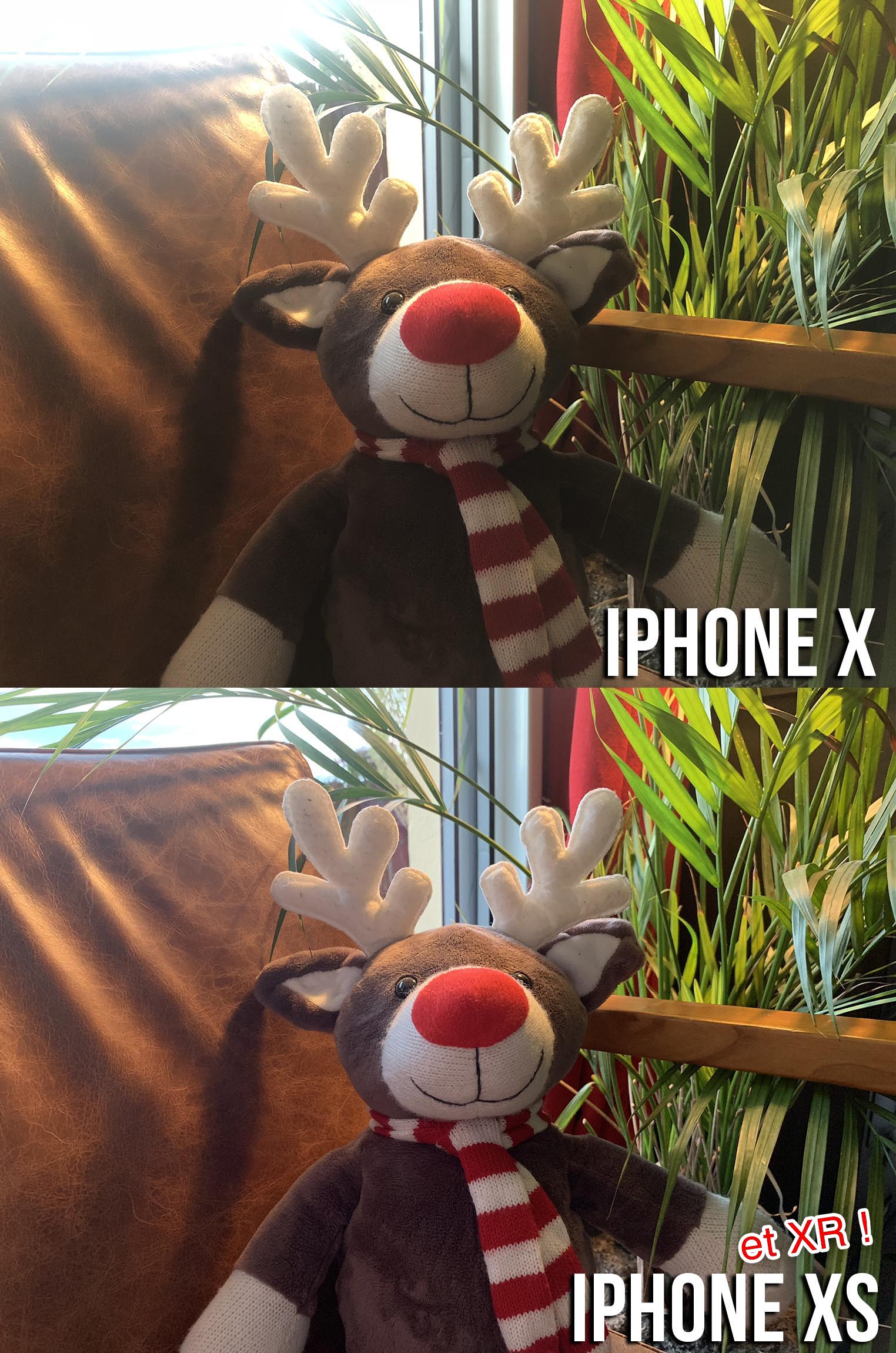 Test appareil photo iPhone XS